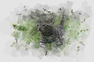 watercolor cat in GIMP app